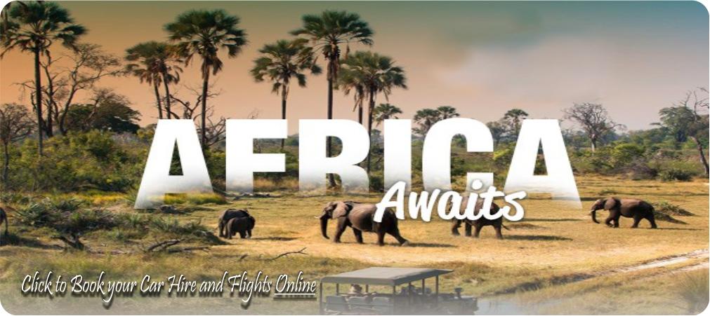 kruger-park-safari